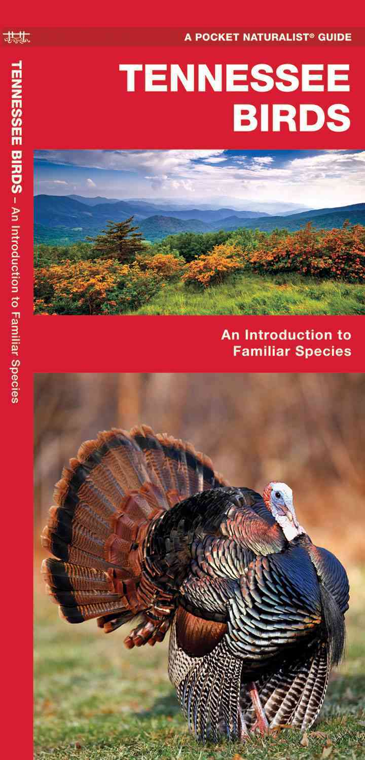 Tennessee Birds By Kavanagh, James/ Leung, Raymond (ILT)